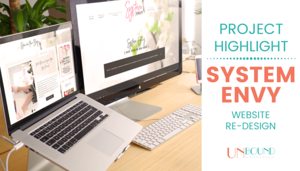 Project Highlight: System Envy Website Redesign